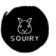 Squiry.in -  Hangout ideas and Events...